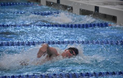 Swim Team Qualifies for Regionals
